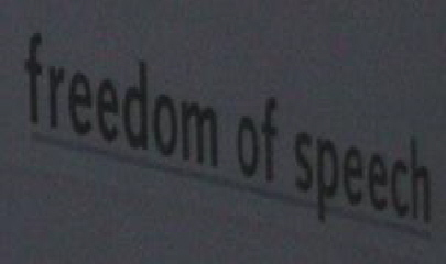 a_Freedom_of_speech_1_[1]